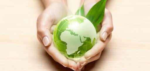 Klimastreik: Junge Grüne zeigen sich fassungslos über den Entscheid der St. Galler Bildungsbehörden