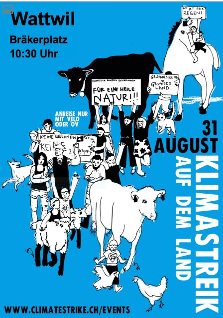31. August, 10.30 Uhr, Klima-Demonstration auf dem Bräkerplatz in Wattwil